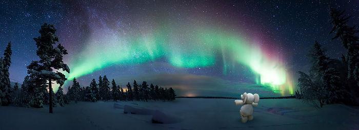 See The Aurora