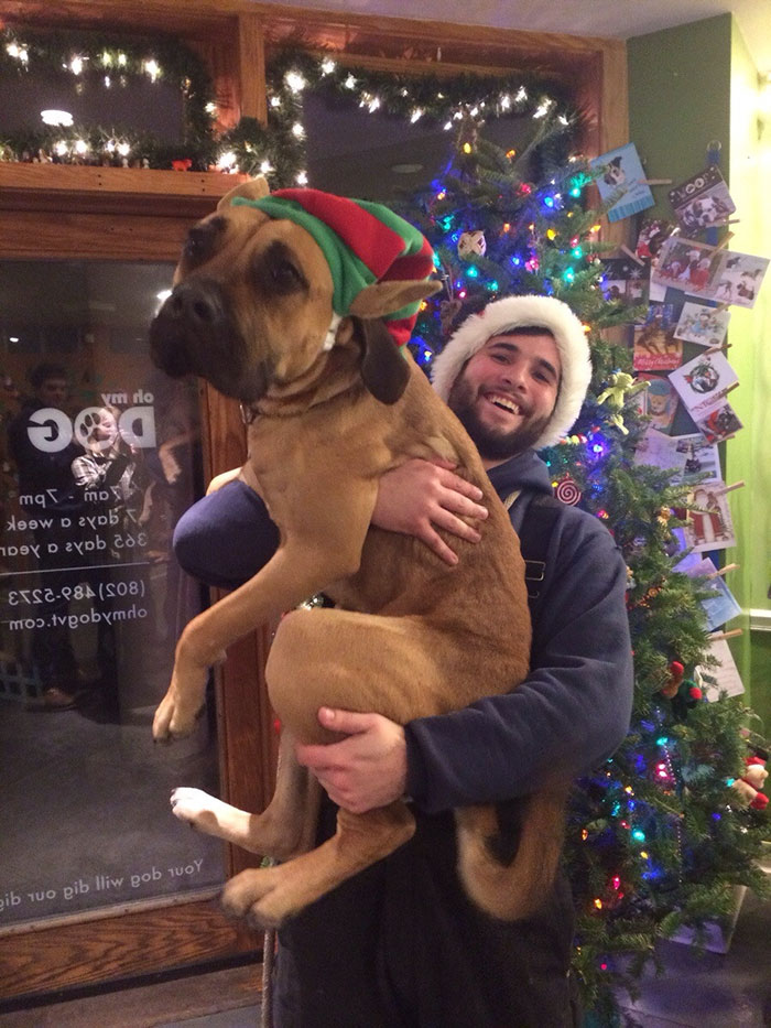 Dog Waits 8 Months To Find A Home, Gets Adopted By Caretaker On Christmas