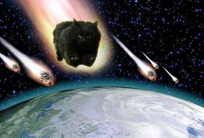 Asteroid Kitty