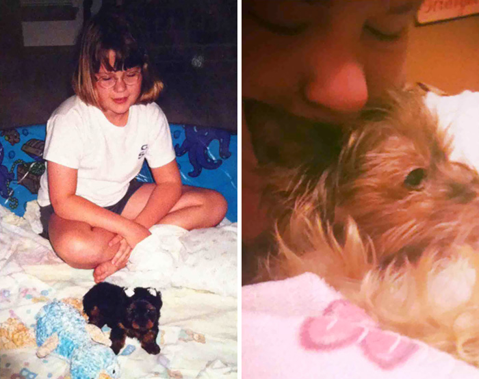My Dog Passed Away After 13 Years Together. Our First Day And Last Day Together