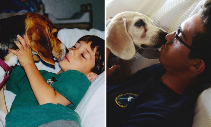 74 Heartbreaking First & Last Pics Of Pets That'll Make You Want To Hug Your Pet And Never Let Go