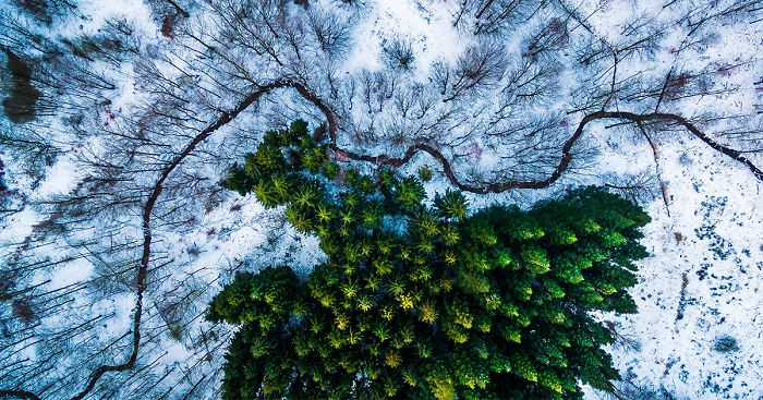 23 Of The Best Drone Photos Of 2016 | Bored Panda