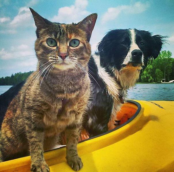 Besties On Kayak Patrol