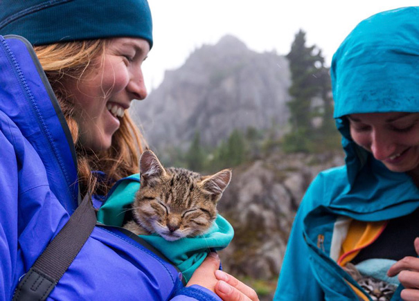 That Time We Took Our Kittens Canoeing And Hiking