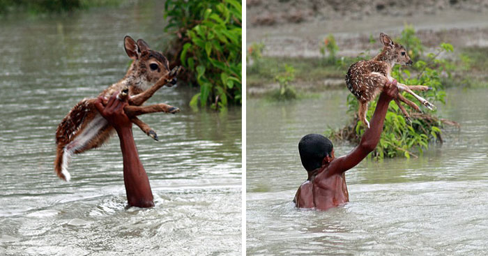 10+ Images That'll Restore Your Faith In Humanity