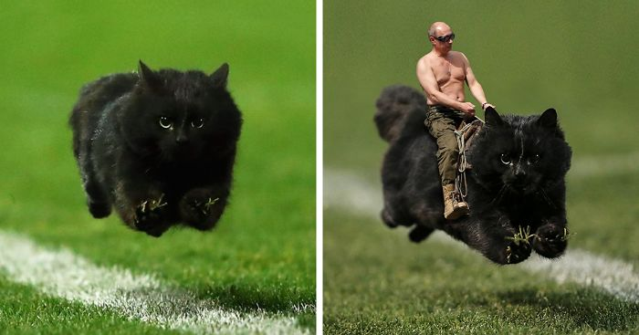 fat cat manhattan