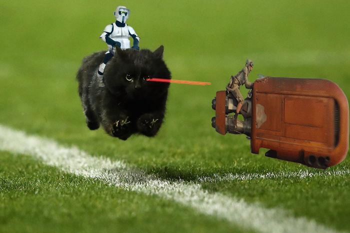 Speeder Fight Interrupts Rugby Game