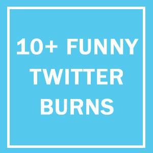 10+ Twitter Burns That Definitely Left A Mark