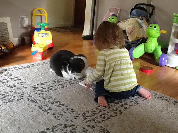 """My Wife Told My Daughter That The Kitty Was Hurt (Arthritis) And To Be Careful With Her. Daughter: """"Ok I'll Read To Her"""""""