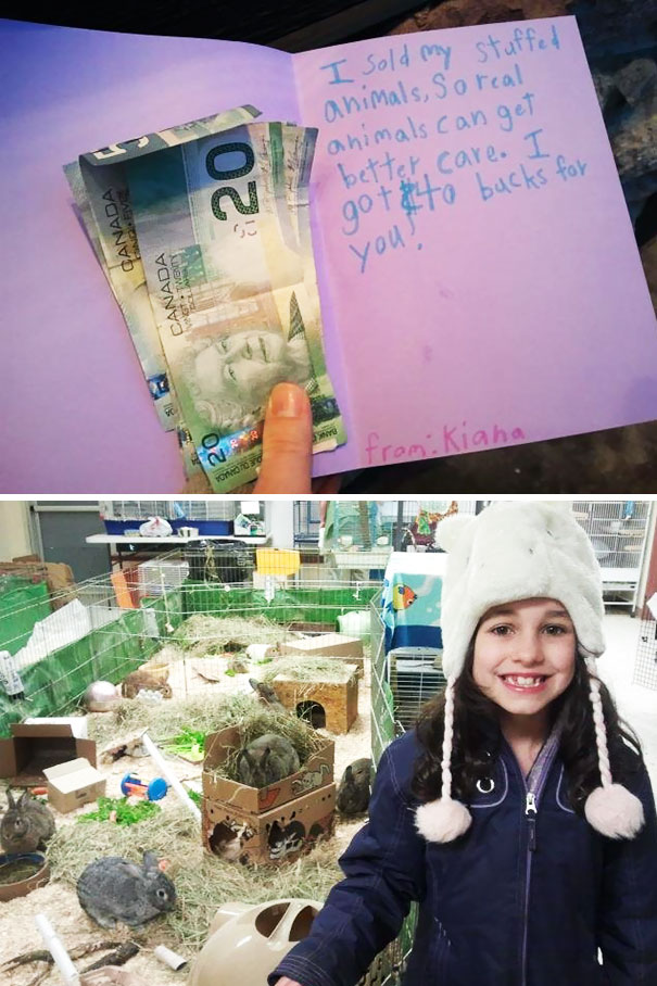 My Daughter Asked Me If She Could Sell Her Stuffed Animals And Donate The Money To Our Local Spca