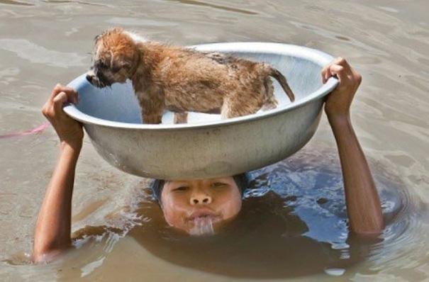 This Young Filipino Girl Trying To Keep Her Puppy Safe During A Flood