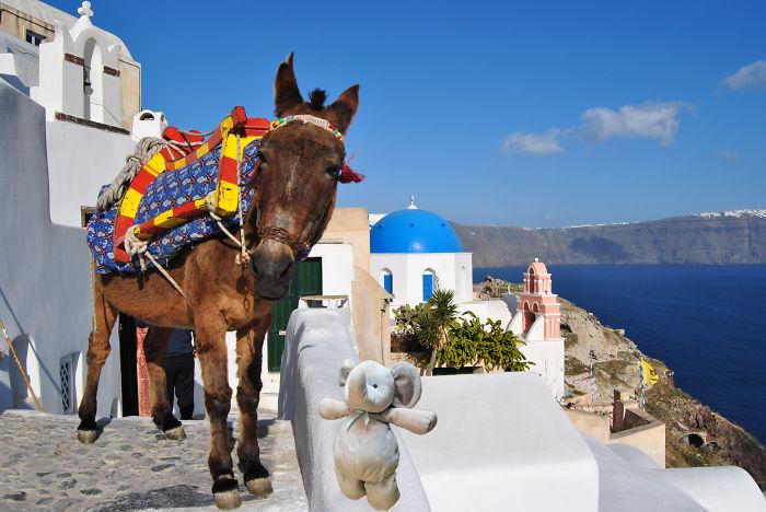 Riding A Donkey In Santorini, Greece