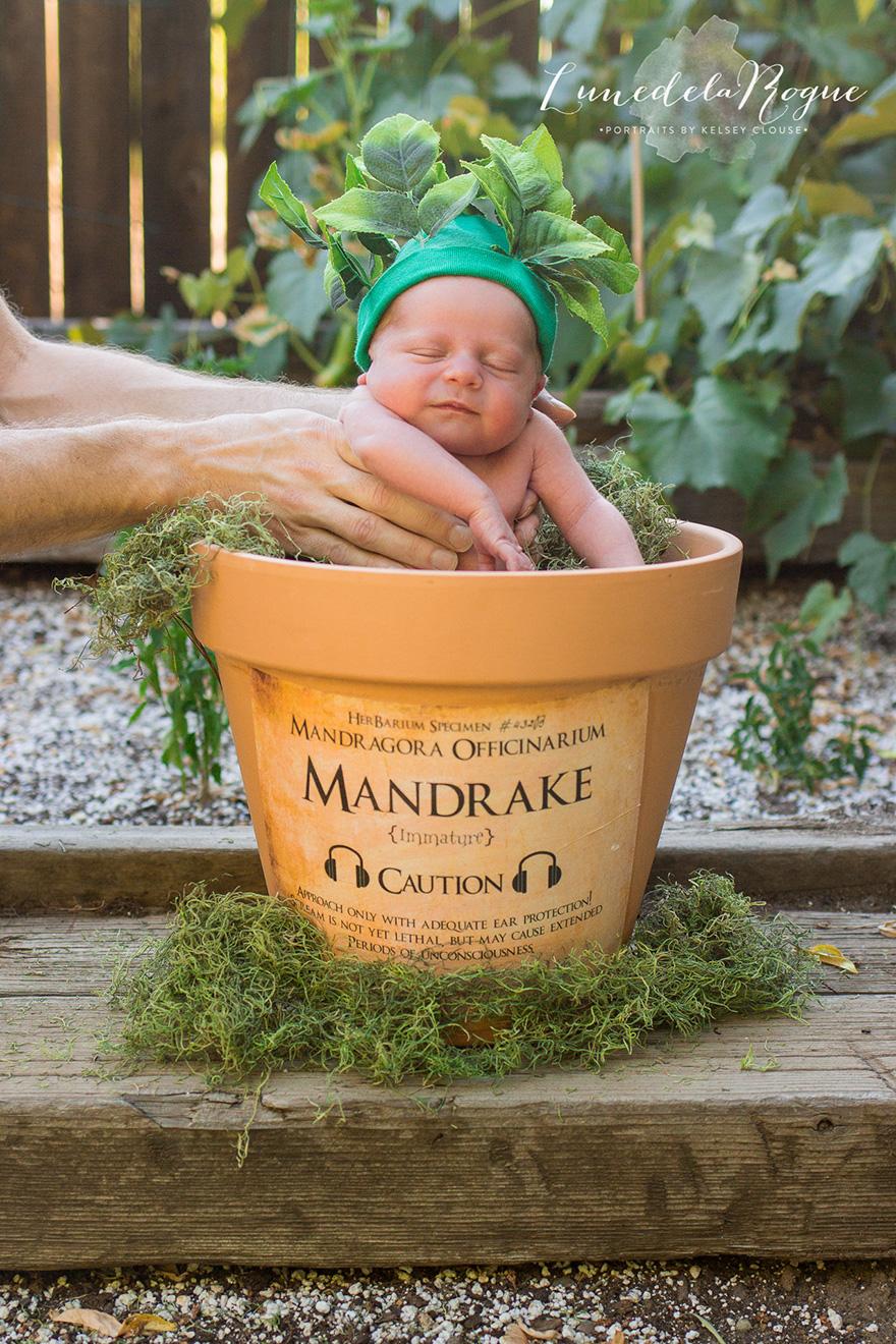 harry-potter-themed-newborn-photography-kelsey-clouse-1
