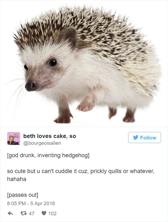 50 Hilarious Explanations How God Created Animals | Bored Panda