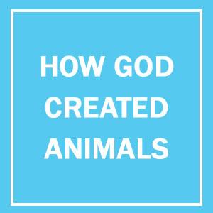 13+ Hilarious Explanations How God Created Animals