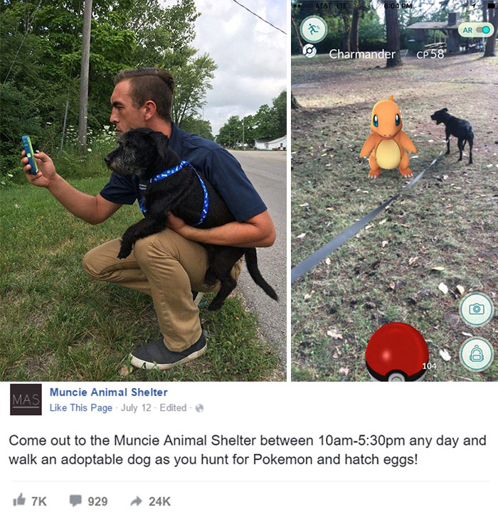 Animal Shelter Asked Pokémon Go Players To Walk Their Dogs