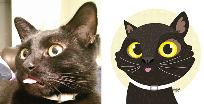 I Draw Cats And Dogs From Photos