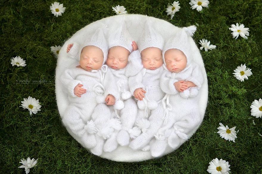 identical-quadruplet-newborn-photography-baby-photoshoot-noelle-mirabella-2