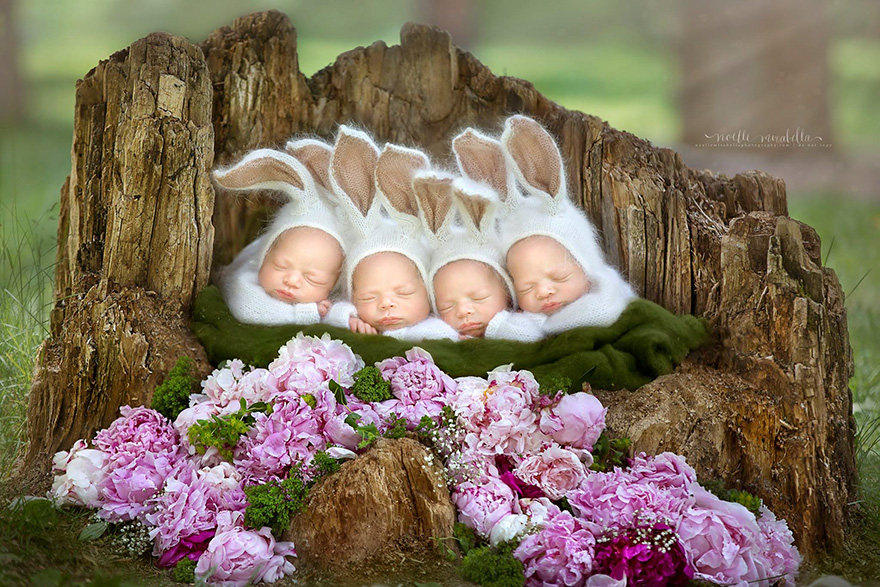 identical-quadruplet-newborn-photography-baby-photoshoot-noelle-mirabella-6
