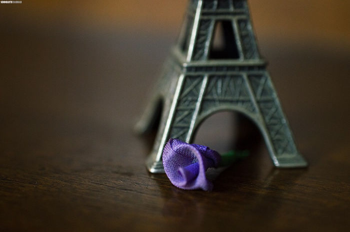 A Little Gesture. May Peace Be In France.