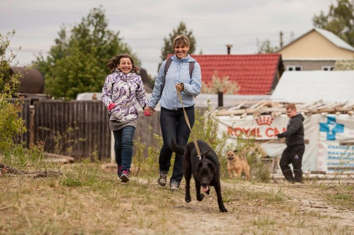 Volunteers In Surgut (siberia) Join Every Sunday In A Local Shelter To Walk Shelter Dogs