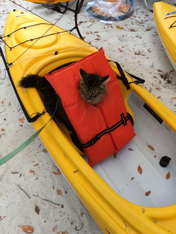 Camping, Kayaking...imdo It All.