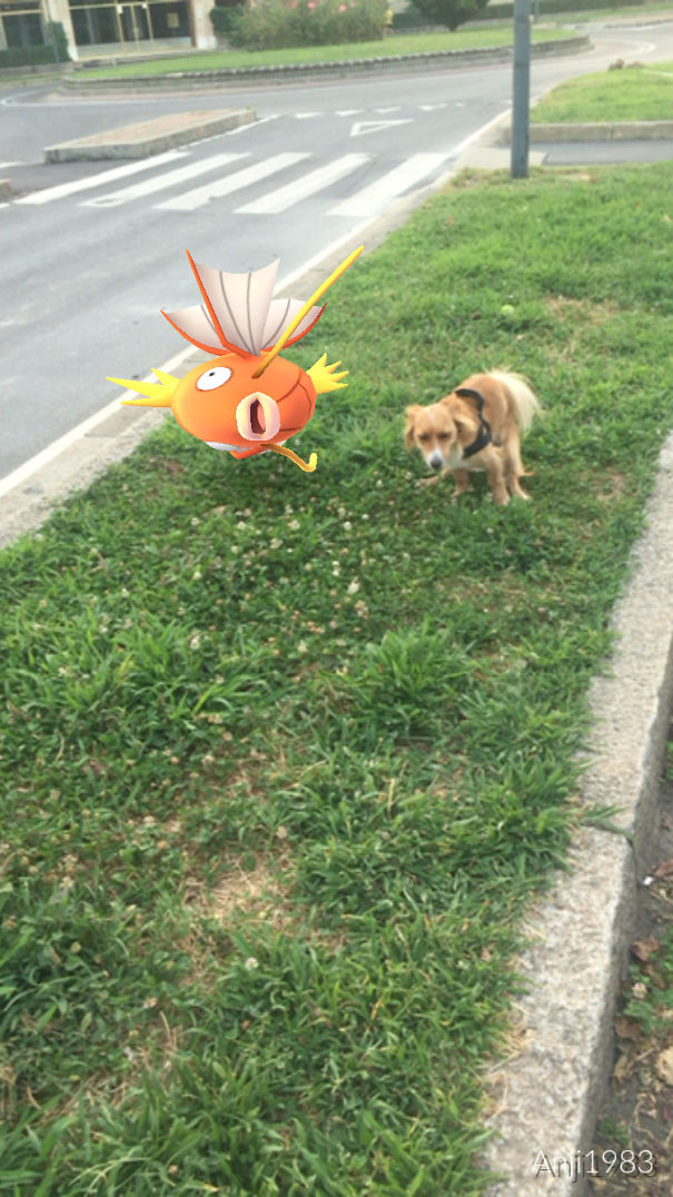 Ispired By Magikarp...