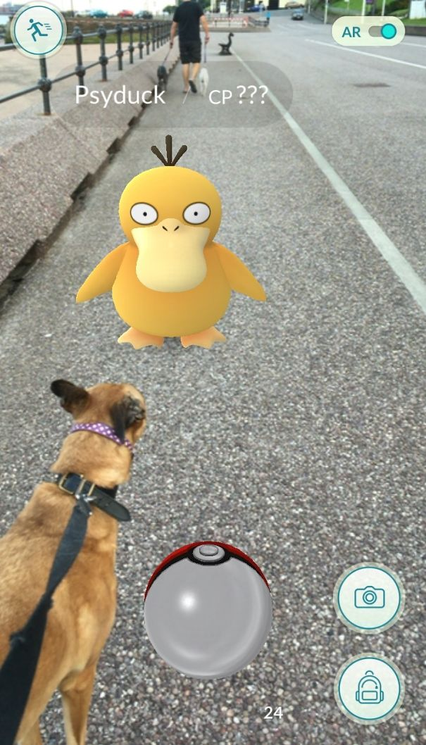 That's One Fat Psyduck, Mum, Can I Eat It?