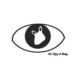 I Spy A Bag