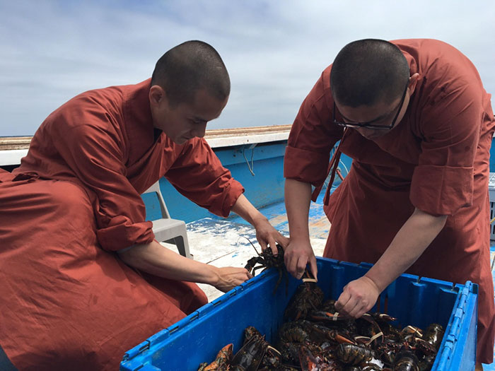 monks-release-600-lobsters-ocean-5