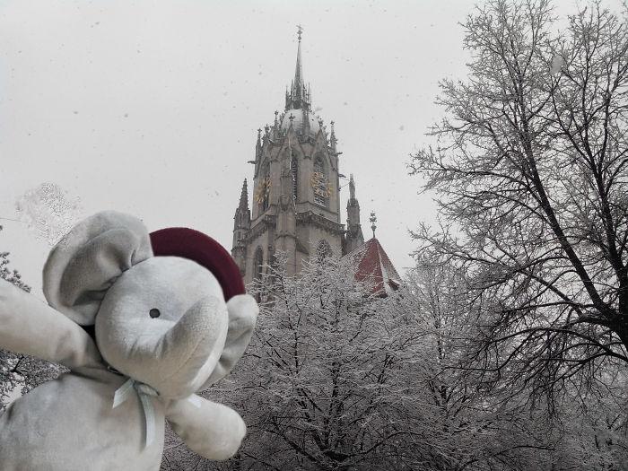 Selfie In Munich (winter)