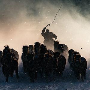 Grand Prize Winner: Winter Horseman, Inner Mongolia
