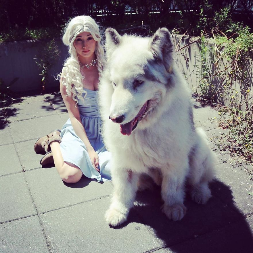Direwolves Are Real Sort Of