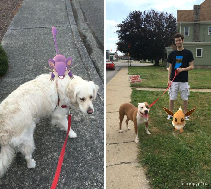 pokemon-go-dog-walking-animal-shelter-muncie-14