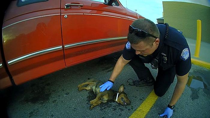 police-rescued-hanging-dog-car-jason-legleiter-1