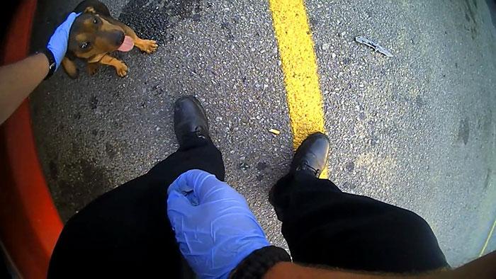 police-rescued-hanging-dog-car-jason-legleiter-3