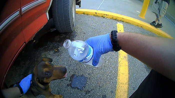 police-rescued-hanging-dog-car-jason-legleiter-4