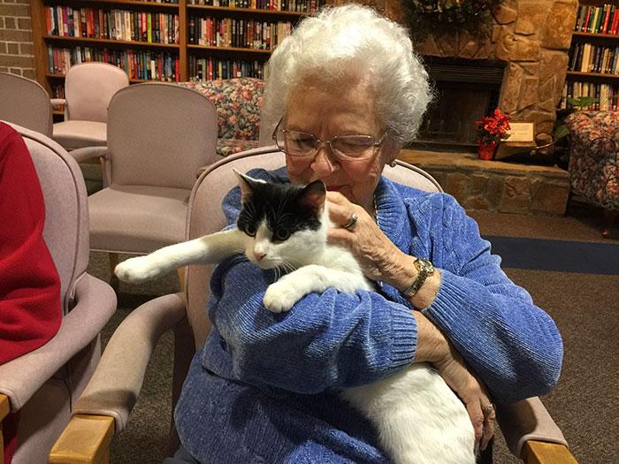 Super Shelter Brings Senior Cats To Seniors In Nursing Homes So They Can Short Hairstyles For Black Women Fulllsitofus