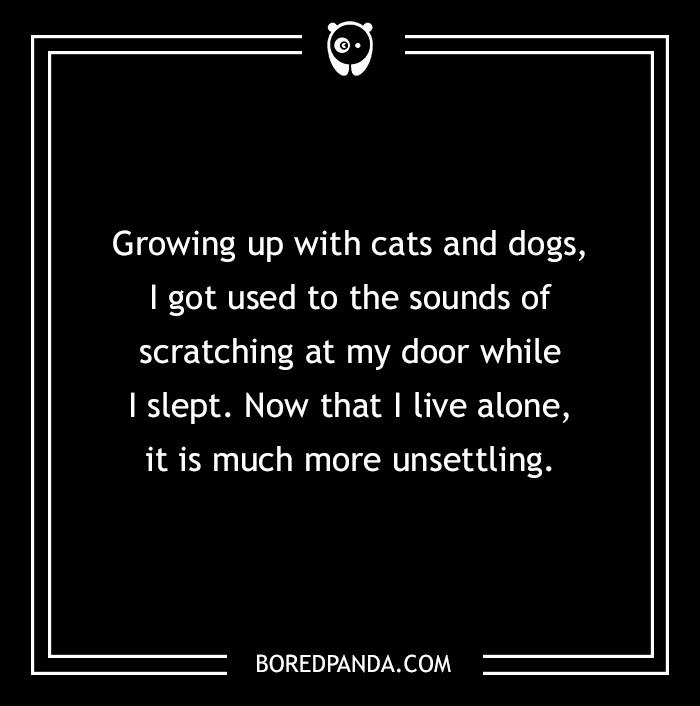 Pet Horror Story