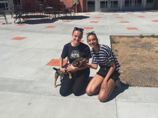 smiling-dog-adopted-nala-california-1