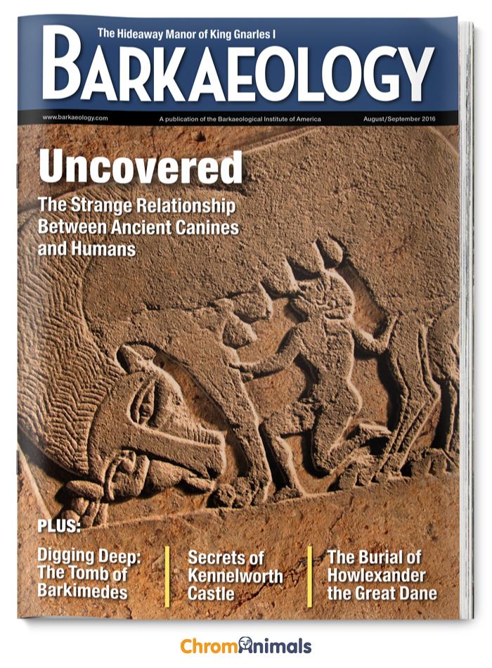 Barkaeology