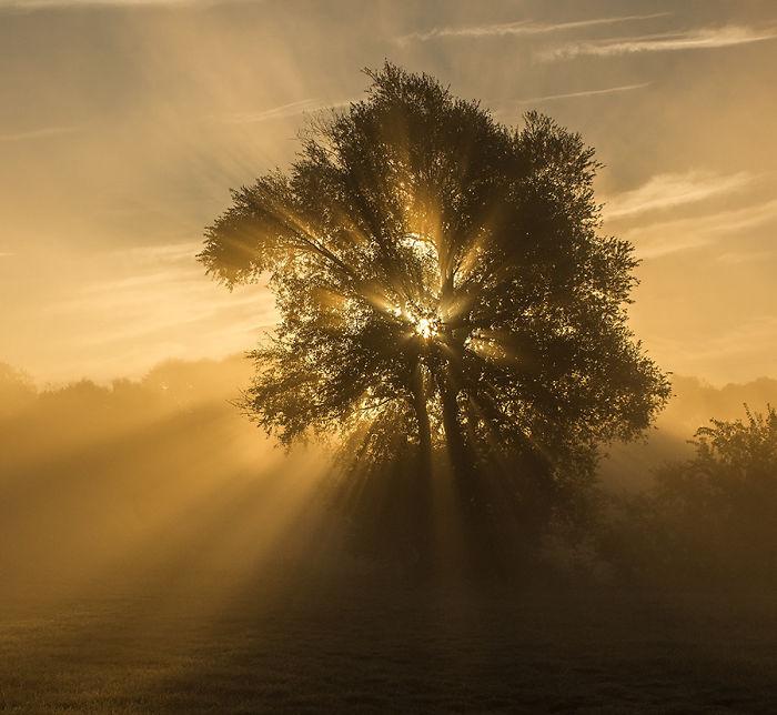 The Beautiful Nature I-Photograph-The-Beautiful-Nature-of-Poland-57a875e2cb661__700.jpg