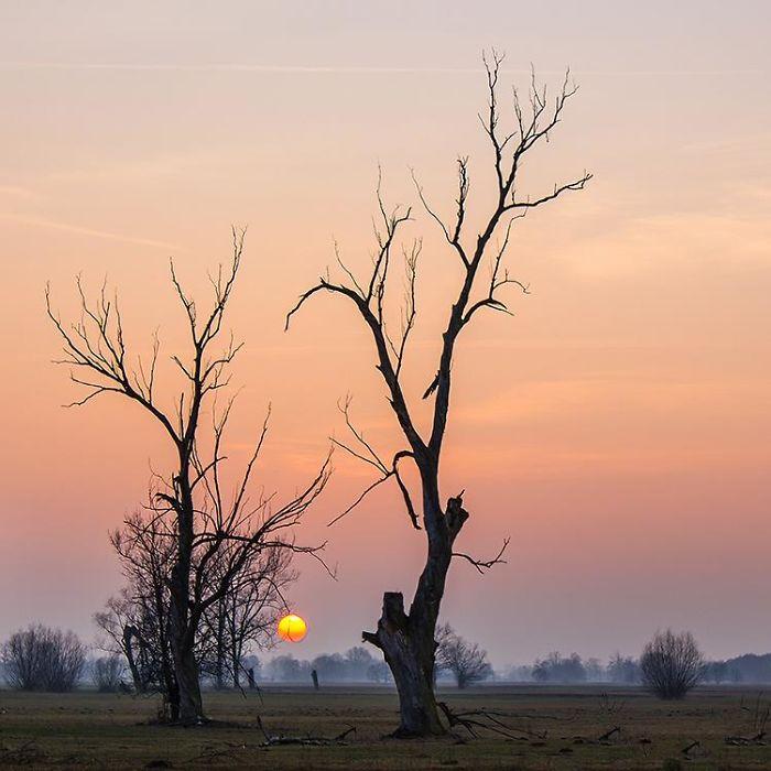 The Beautiful Nature I-Photograph-The-Beautiful-Nature-of-Poland-57a875e925b39__700.jpg