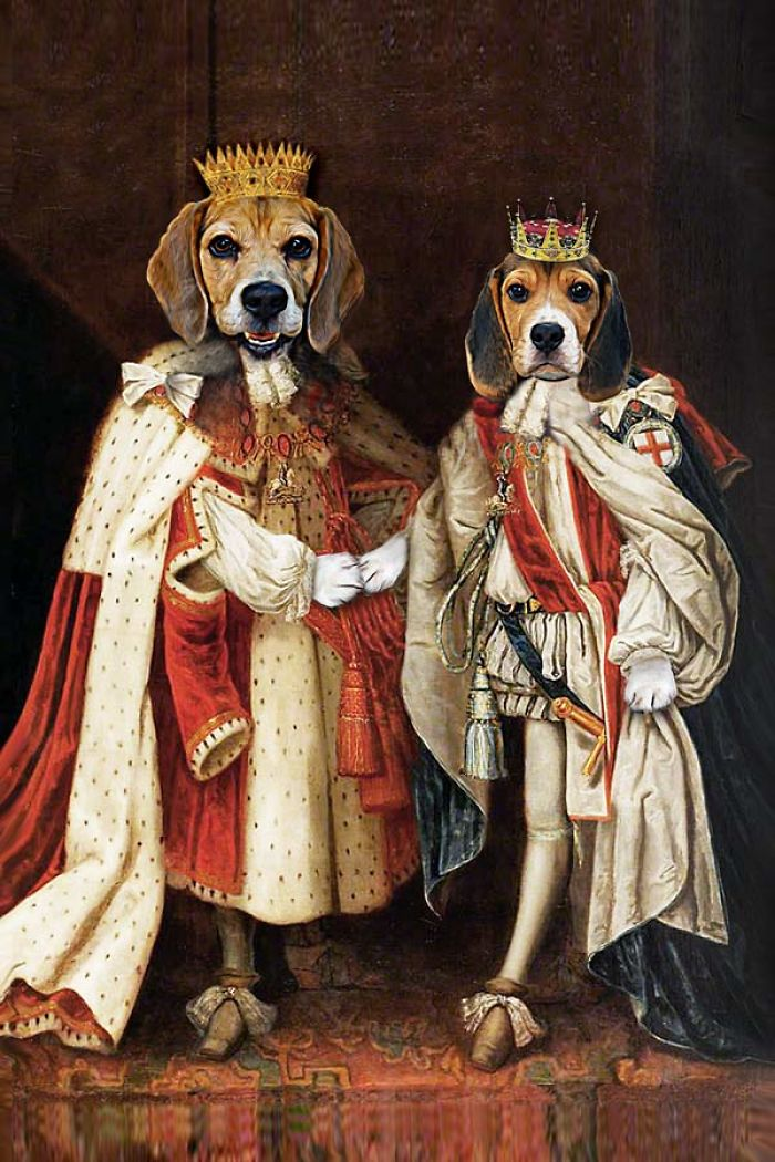 "King James & King Charles - ""the Regal Beagle Brothers"""