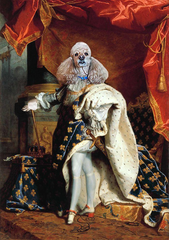 """King Louis Xiv - """"king Poodlie Xiv"""""""