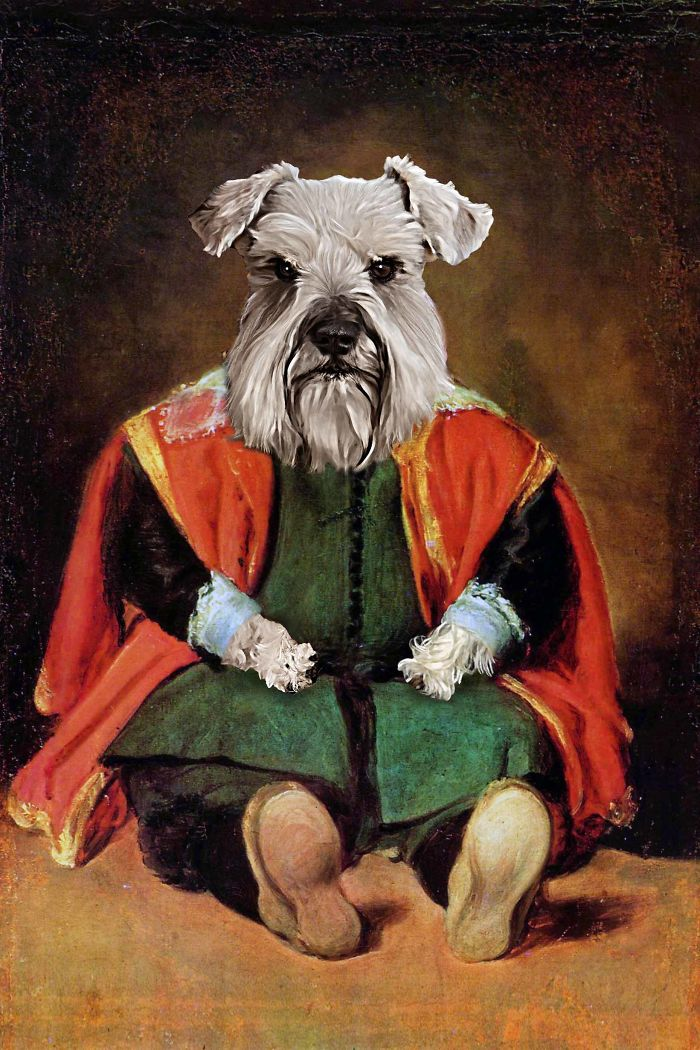 Dwarf Jester Terrier