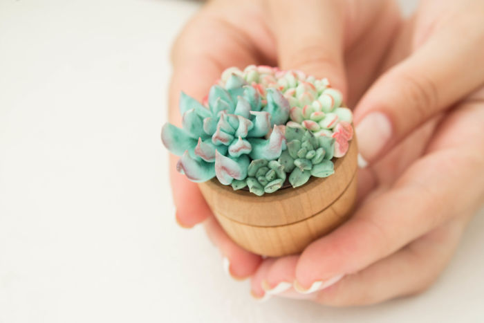I Create Succulent And Flower Ring Boxes To Help People Get Married