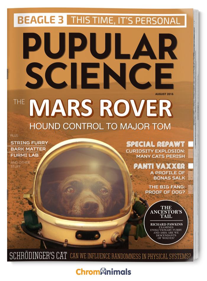 Pupular Science