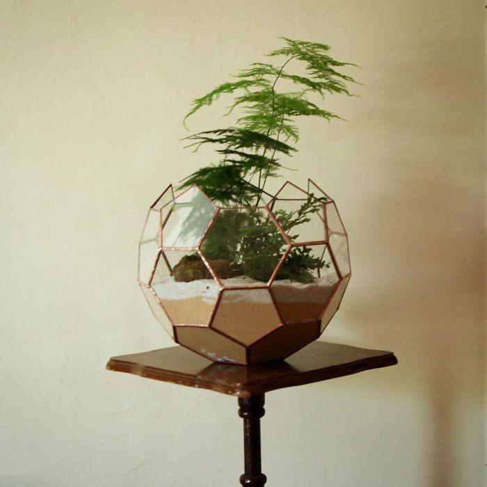 I reimagined the terrarium bored panda