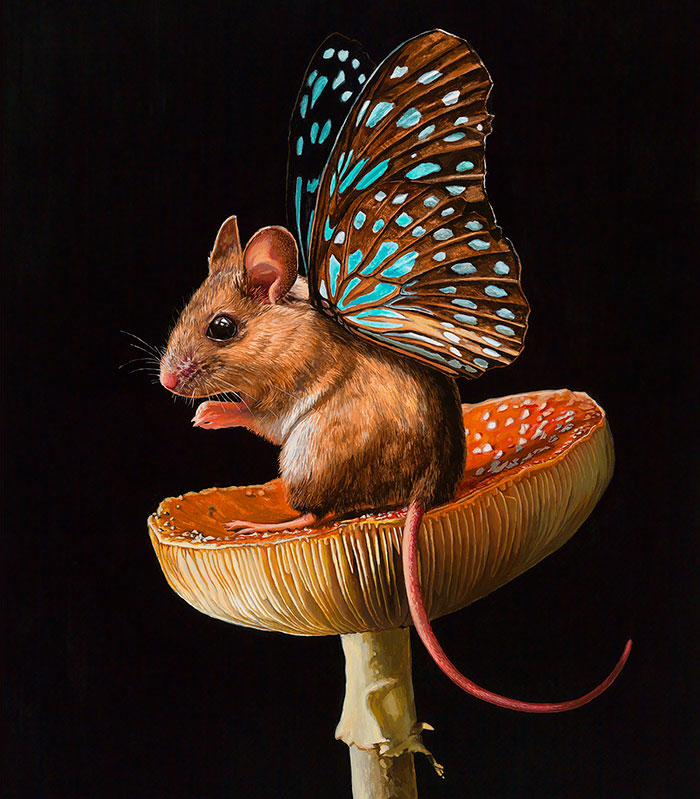 I Painted A New Species I Wish Existed – Meet The Mouserflies